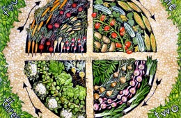 Севооборот на огороде - тема сегодняшнего разговора.  О необходимости чередования культур я писал в статье...